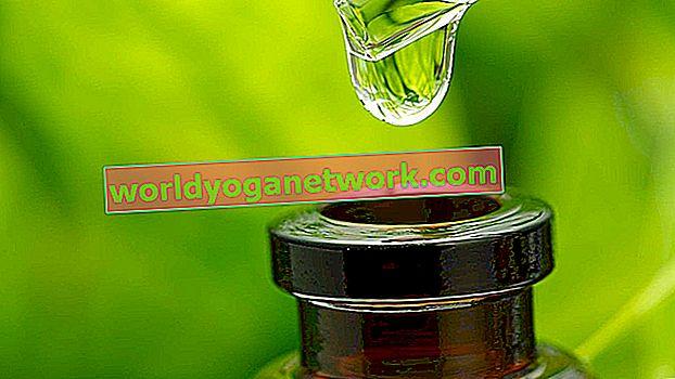 Kombinacija 5 esencijalnih ulja koja mirišu bolje od vaših omiljenih svijeća