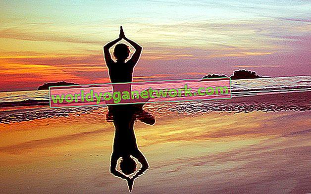 Semi di cambiamento: comprensione yogica del karma