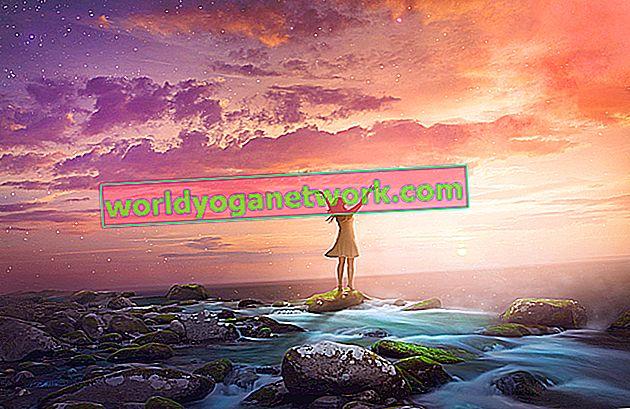 Alinhamento de chakra: acesse seu eu superior por meio do corpo sutil