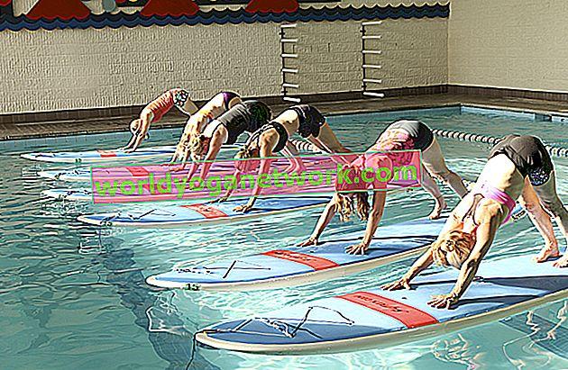 Probieren Sie den neuen Trend: Indoor SUP Yoga Kurse