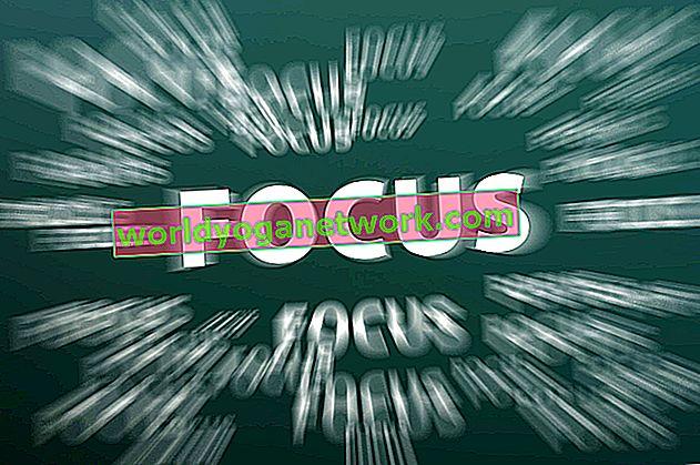 Fokusera på ADHD