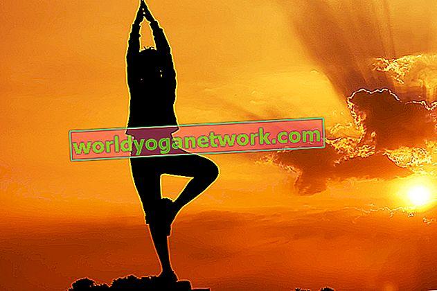 Der Sonnengruß entschlüsselt: Lerne Surya Namaskar