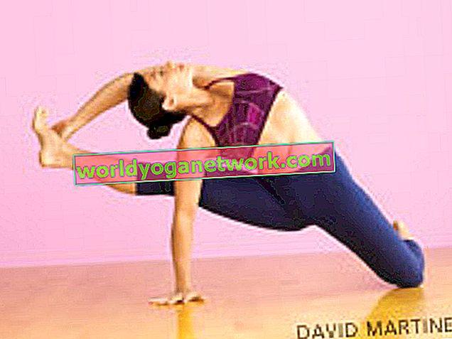 Shiva Rea's Twisting + Soaring Visvamitra's Pose