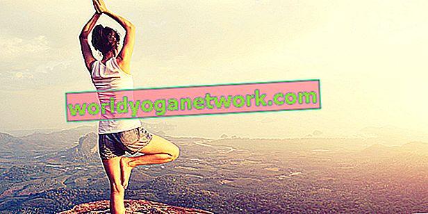 10 myter om yogier