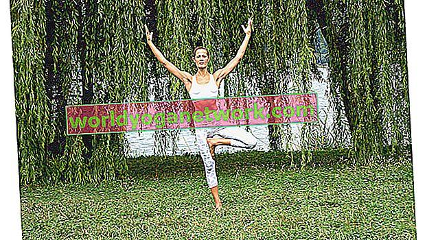 4 variantes de pose d'arbre difficiles pour un meilleur équilibre