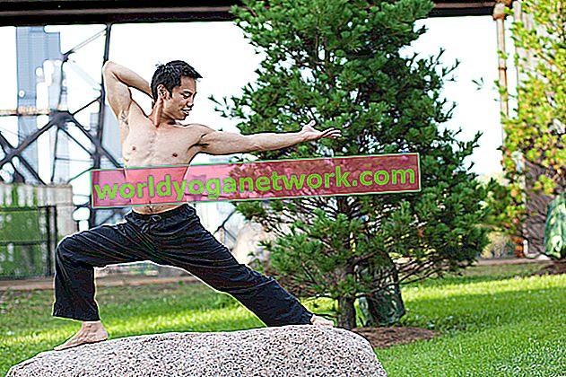 Anatomie de base pour les professeurs de yoga: flexion vs extension